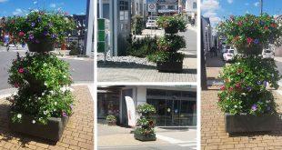 Der Sommer ist da: 14 Blumentürme wurden in der Innenstadt verteilt aufgestellt.